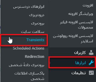 مدیریت و حذف Transient ها در وردپرس