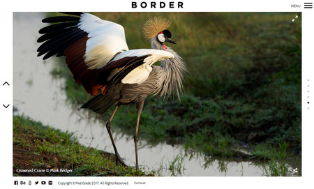 دانلود قالب عکاسی BORDER برای وردپرس