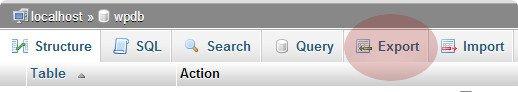 انتقال سایت وردپرس از سرور به لوکال هاست