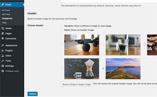 افزودن تصویر رندوم در سربرگ وردپرس با افزونه WP Display Header