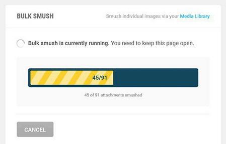 افزونه فشرده سازی تصاویر در وردپرس WP Smush Pro