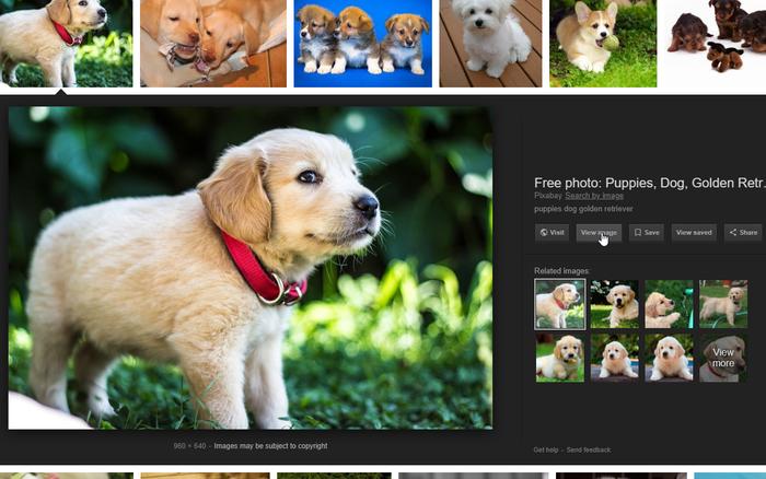 چگونه در گوگل عکس دانلود کنیم؟